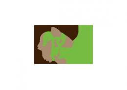 logo_prophysio_startseite